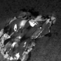 Comet particle collected by the Stardust spacecraft.